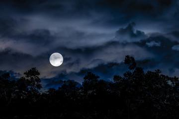Moonscape Dark Scene Illustration Collage