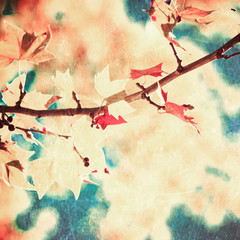 Vintage autumn leafs in a tree
