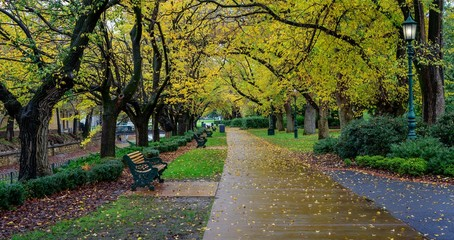 Rosalind Park Bendigo, Victoria, Australia rainy day