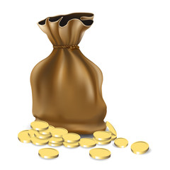 Money bag icon design, bag with pile of golden coins.