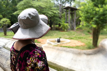Women looking tapir at the zoo. (Korat zoo in Thailand)