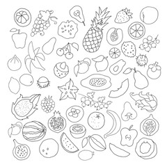 Collection of ink doodle fruits and berries