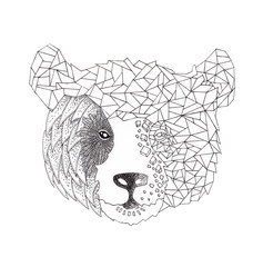 the bear half geometrical design of animal with abstract origami isolated on the white background