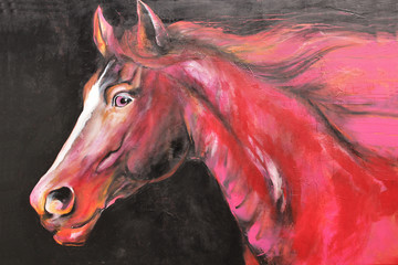 Paint of Horse