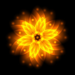 Abstract glowing light flower, symbol of life and energy, fire f