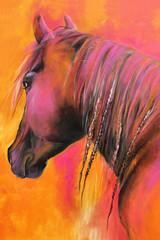 Pinkes Pferd / Orange