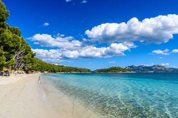 Fototapete - Platja de Formentor - beautiful beach at cap formentor, Mallorca