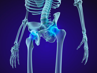Human skeleton: pelvis and sacrum. Xray view. Medically accurate 3D illustration