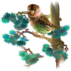 Illustration of fantasy owl sitting in the tree, vector cartoon image.