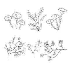 Vector hand drawn spring floral illustration set. Flowers and branches