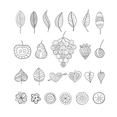 Hand drawn  doodle floral elements. Set of fruits, hearts, leaves, flowers