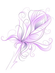 Purple rose - artistic vector illustration