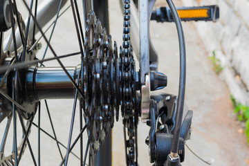 Bicycle's detail view of rear wheel with chain & sprocket