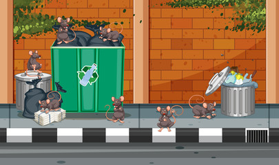 Scene with rats in the trashcans