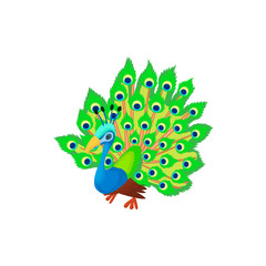 Peacock icon in cartoon style isolated on white background. Bird symbol