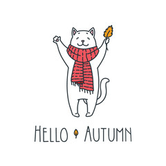 Hello autumn. Doodle vector illustration of funny white cat with red scarf