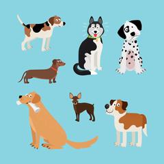 Vector cartoon happy dogs set. Vector illustration