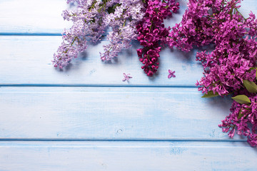 Background with fresh aromatic lilac flowers on blue wooden plan