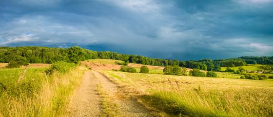Lane across a field in France Wall mural