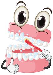 Brushing teeth with toothbrush