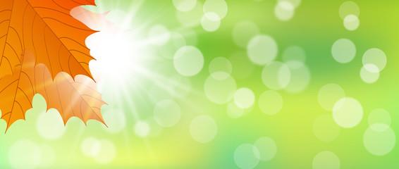 Hintergrund Herbst mit Sonne