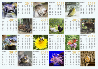 Calendar for 2017 with animals, birds, fish and insects