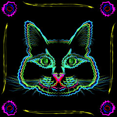 Cat card. Tubby cat in the frame of stems and flowers on a black background.