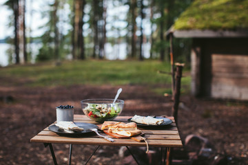 picnic in the woods. kebab, salad and berries