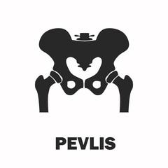 Human pelvic bones black icon