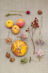 Autumn flowers, plants and fruits on jute background
