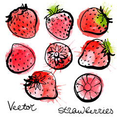 Set strawberry painted a black line on a white background. Bright berries abstract watercolor stains