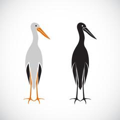 Vector of stork design on white background.