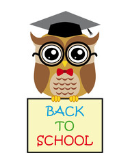 Cute owl teacher on white background cartoon with sign back to school