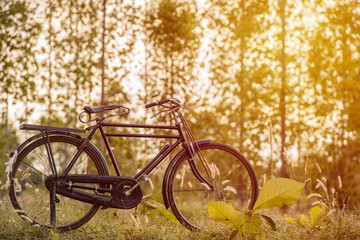 landscape image vintage Bicycle at sunset with summer grassfield