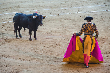 Spanish bullfighter in the bullring
