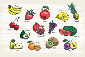 Set of fruit hand drawn with colors and name.