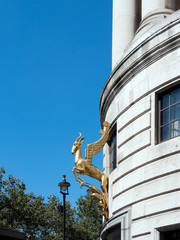 South African  Golden Springbok on a Building in London