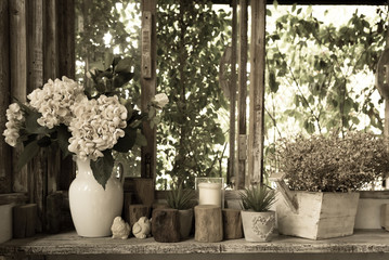 white flowers in clay pots arranged on the edge of wooden window box with open shutters