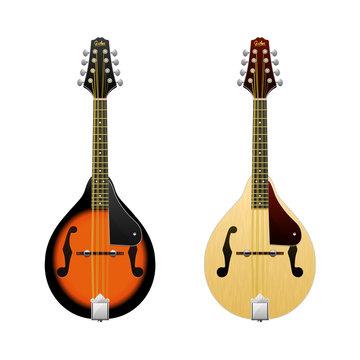 Realistic vector Mandolin / isolated on white mandolin / Folk music instrument / Mini-guitar