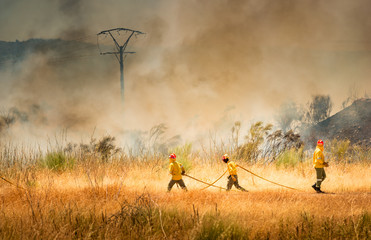 Firefighters  fighting fire.