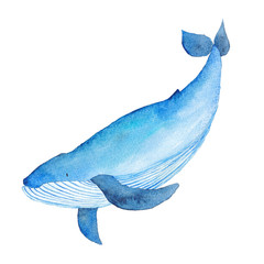Blue Whale Watercolor hand-painted Illustration Sea animals Blue Whales Isolated Cute Kids