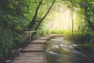 Fototapeta Wooden path across river in dark green forest obraz