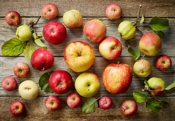 various kinds of apples