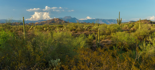 Sunset approaches the Superstition Mountains
