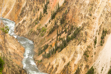 Yellowstone River Grand Canyon of Wyoming's National Park