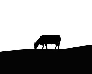 Cow Silhouette, Outline