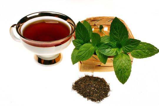 Mint mentha pulegium tea