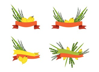 sukkot collection, four symbols of Jewish holiday