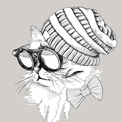 Image Portrait of a cat wearing a knitted hipster hat and sunglasses. Vector illustration.