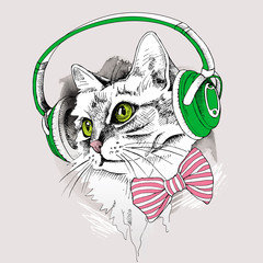 Portrait cat with headphones and with tie. Vector illustration.